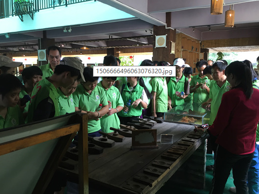 横沥康就中心与东莞市技师学院志愿者到茶山圣心蛋糕博物馆参观学习